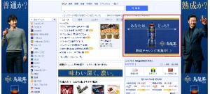 リッチメディア広告①