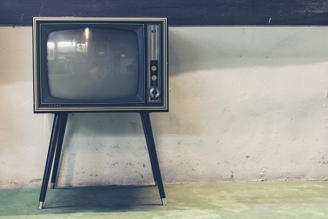 tv ペイドメディア(Paid media)