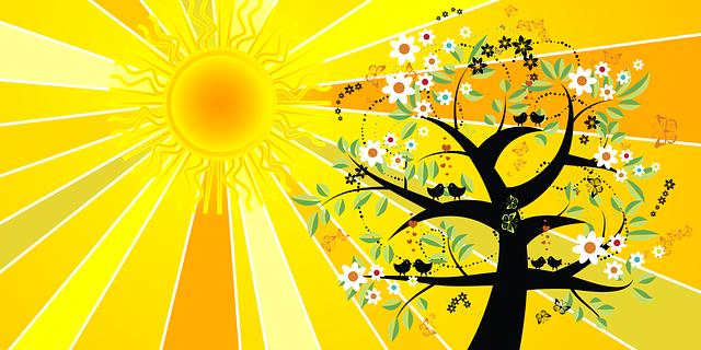 見込み客の行動と決断の本質。イソップ寓話『北風と太陽』より、、、